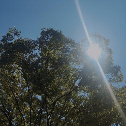 summers-sunshine